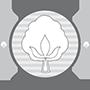 logo-cotone